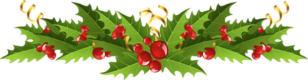 clipart-winter-greenery-9.png