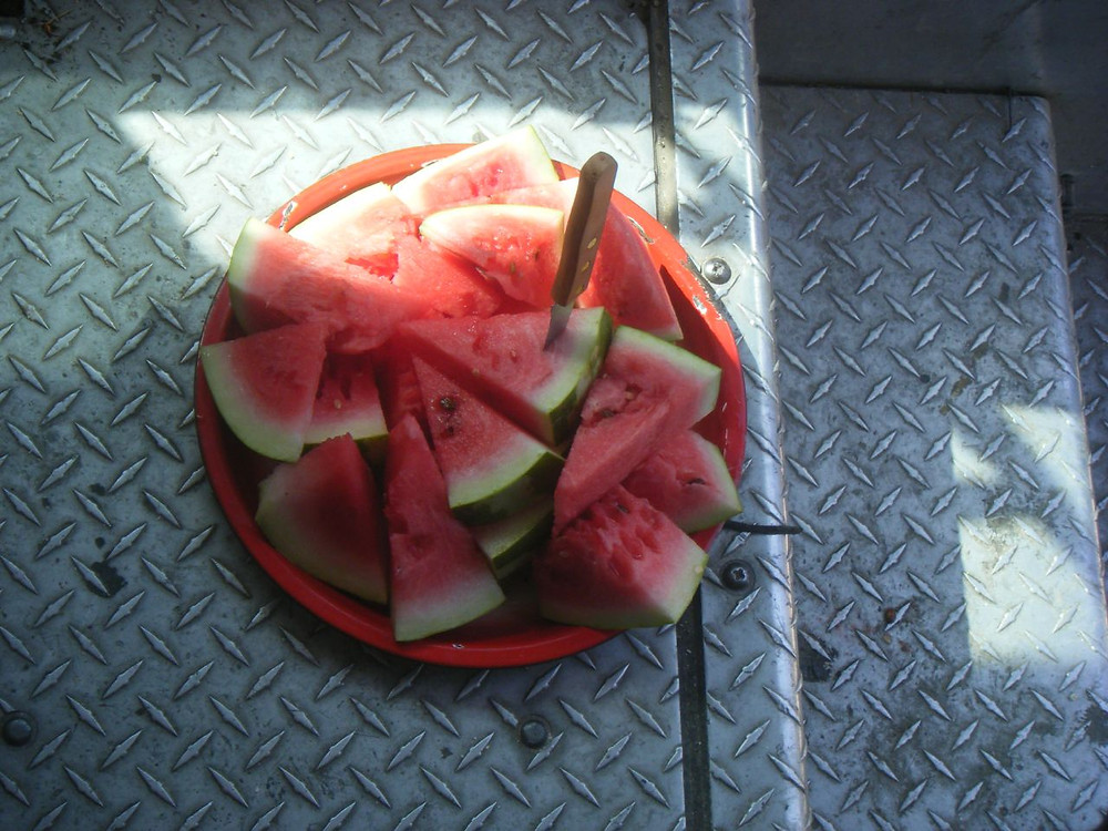 richmond virginia watermelon festival.jpg
