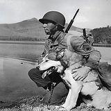 WWII.jpg