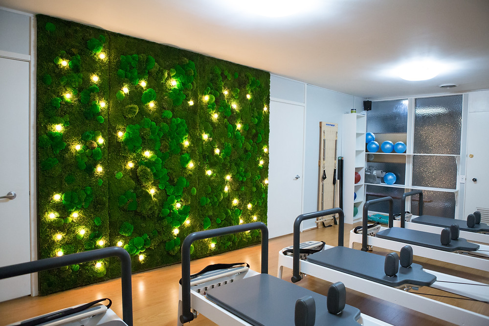 Reformer Pilates Oakland Back in Balance Planted Design Moss Wall