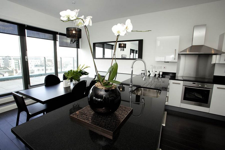 THE LIGHT PENTHOUSES