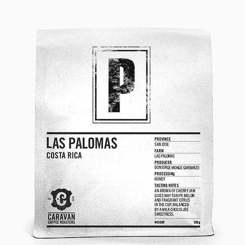 CARAVAN LAS PALOMAS COSTA RICA SINGLE ORIGIN COFFEE
