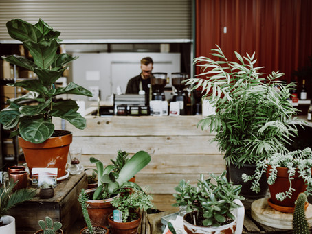 Middleford Coffee: Stories of Comradery