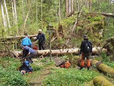 Stor dugnad på Håøya 18. mai