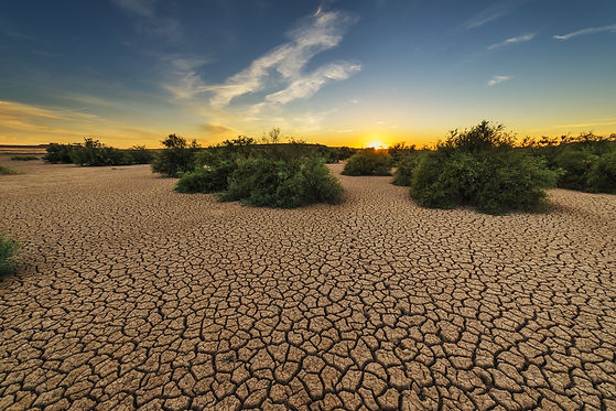 drought-1675729.jpg