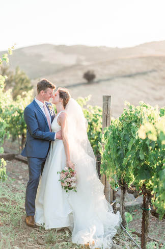 Viansa Winery- Alyssa Wendt Photography_0079.jpg