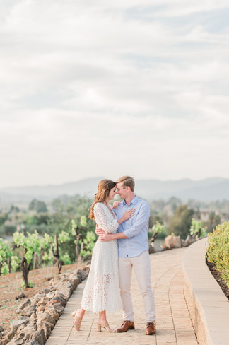 Viansa Winery Sonoma- Alyssa Wendt Photo