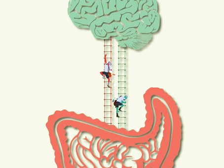 The link between our brain and the digestive system