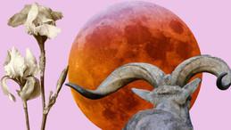Седмичен Хороскоп - 29-ти - 5-ти Юли, 2020 - Лунно Затъмнение в Козирог, Сатурн в Козирог Носят Урок
