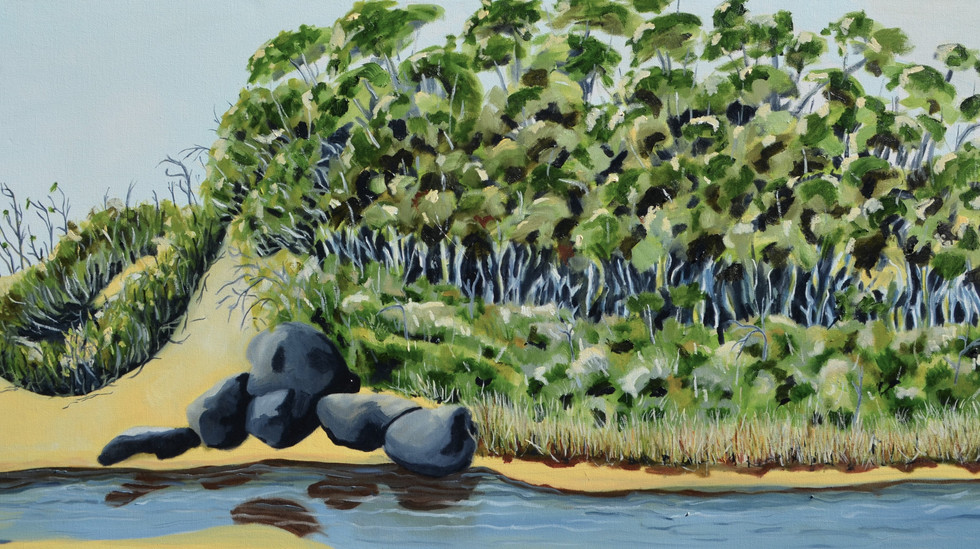 Opens Friday 29 October Dianne Hilyear | Painting Far East Gippsland
