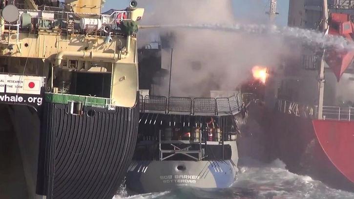 Sea Shepherd Operation Reef Defence