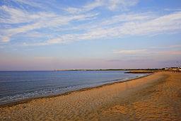 union beach.jpeg