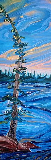 "Lone Pine - 12x36"" Print"