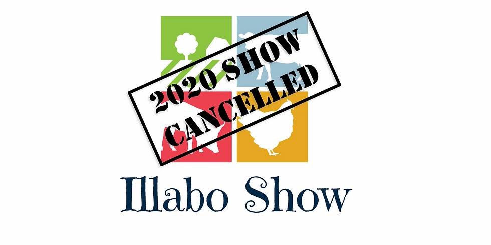 Illabo Show 2020