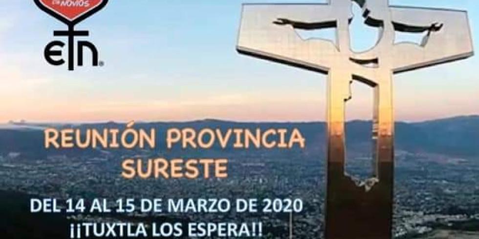 Reunión Provincia Sureste del ECN México