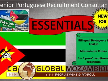 Seeking Senior Portuguese Recruitment Consultant