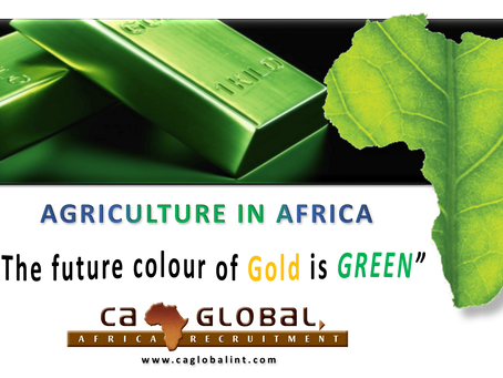 Agriculture: The next booming sector – Africa's Green Revolution