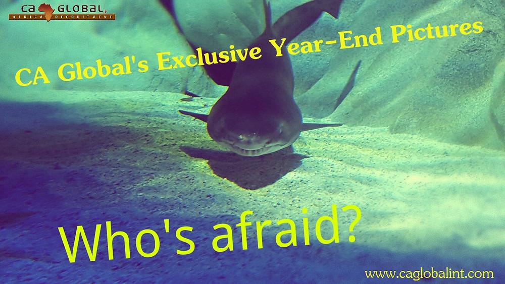 1 CA Global Jobs in Africa 2015 year end function at Aquarium