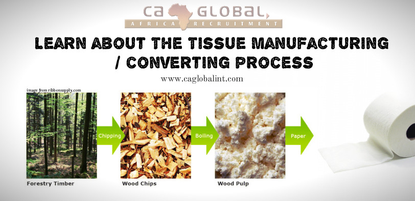Picture of the tissue paper converting process