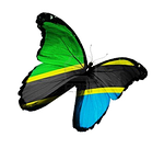 Supply Chain Africa Jobs for Tanzanian Diaspora and Tanzanians_Diane Thake-Raby