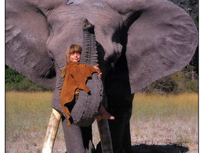 Tippi Degre, Africa's modern day Mowgli
