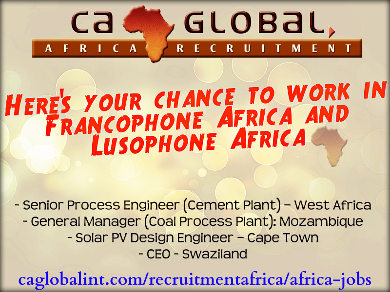 Work in Francophone Africa, Lusophone Africa, Swaziland and Cape Town