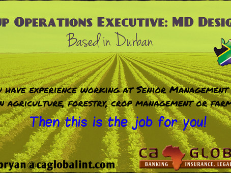 Group Operations Executive Job: MD Designate in Durban