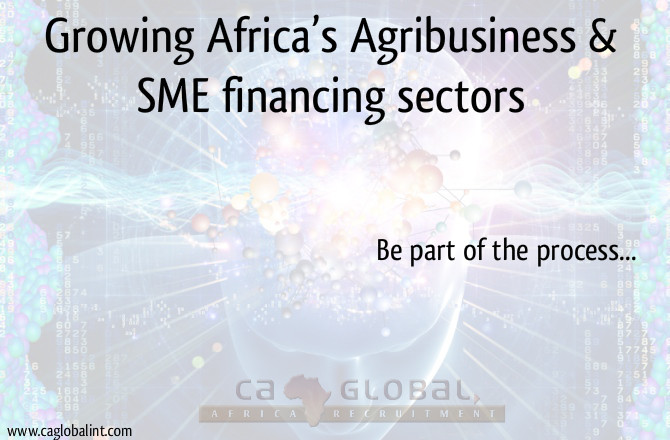 jobs-in-africa-growing-africas-agribusiness-sme-financing-sectors