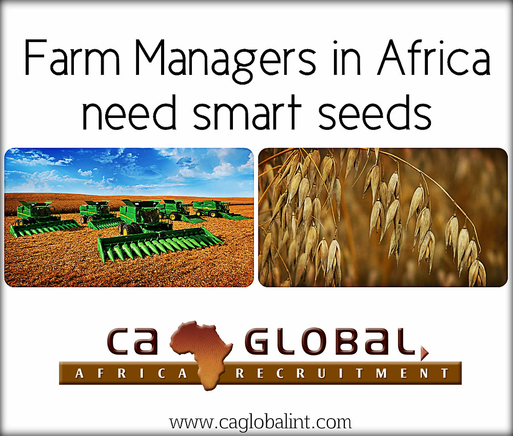 Farm Managers Jobs in Africa _smart seeds