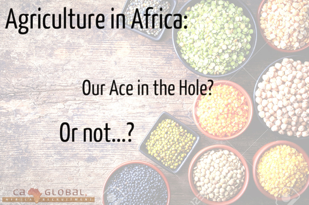 Agriculture in Africa Jobs at CA Global Headhunters