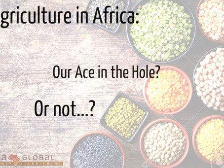 Agriculture in Africa: Our next trade commodity?