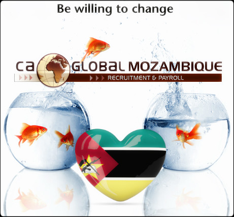 senior_financial_consultant_mozambique_ca_global_bewillingtochange