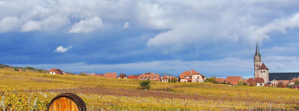 Alsace automne vignes village vin église