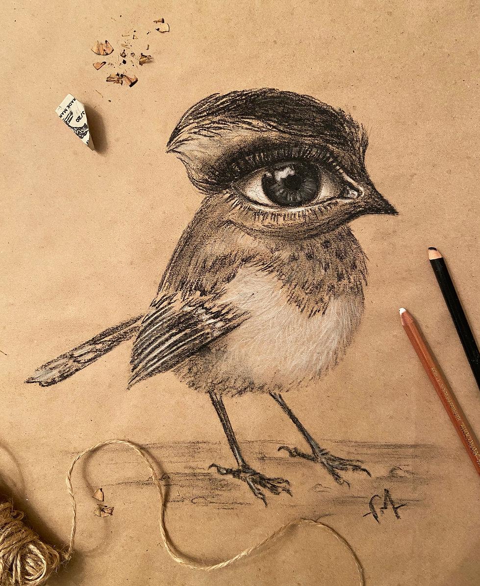 птичка лайф.jpg