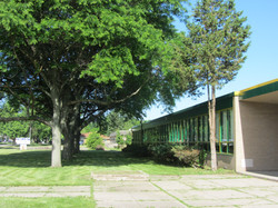 Front Entrance with trees - Copy.jpg