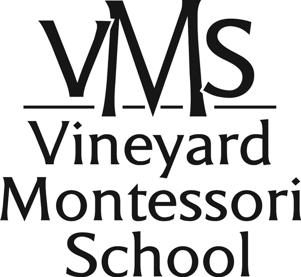 Page-10VMS_Logo_New.png