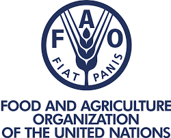 Hunger on the rise in Africa- FAO raises alarm