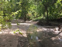 Lower Arroyo Seco 4171.jpg