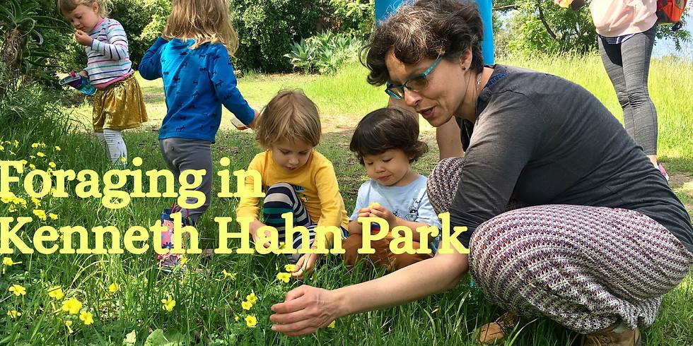 Foraging in Kenneth Hahn Park 03/01