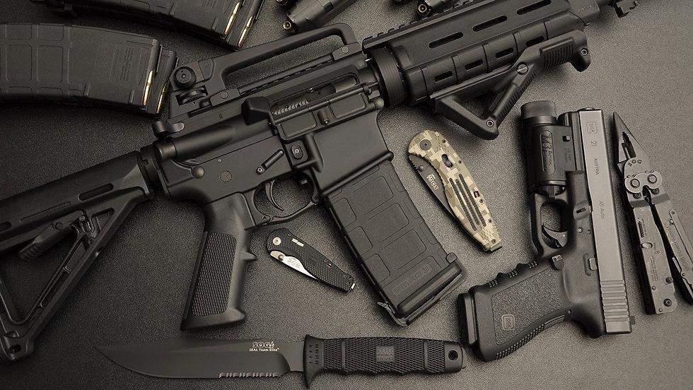 Firearm Poster - 2.jpg