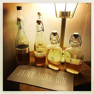 Salon Gin Flaschen I.jpg