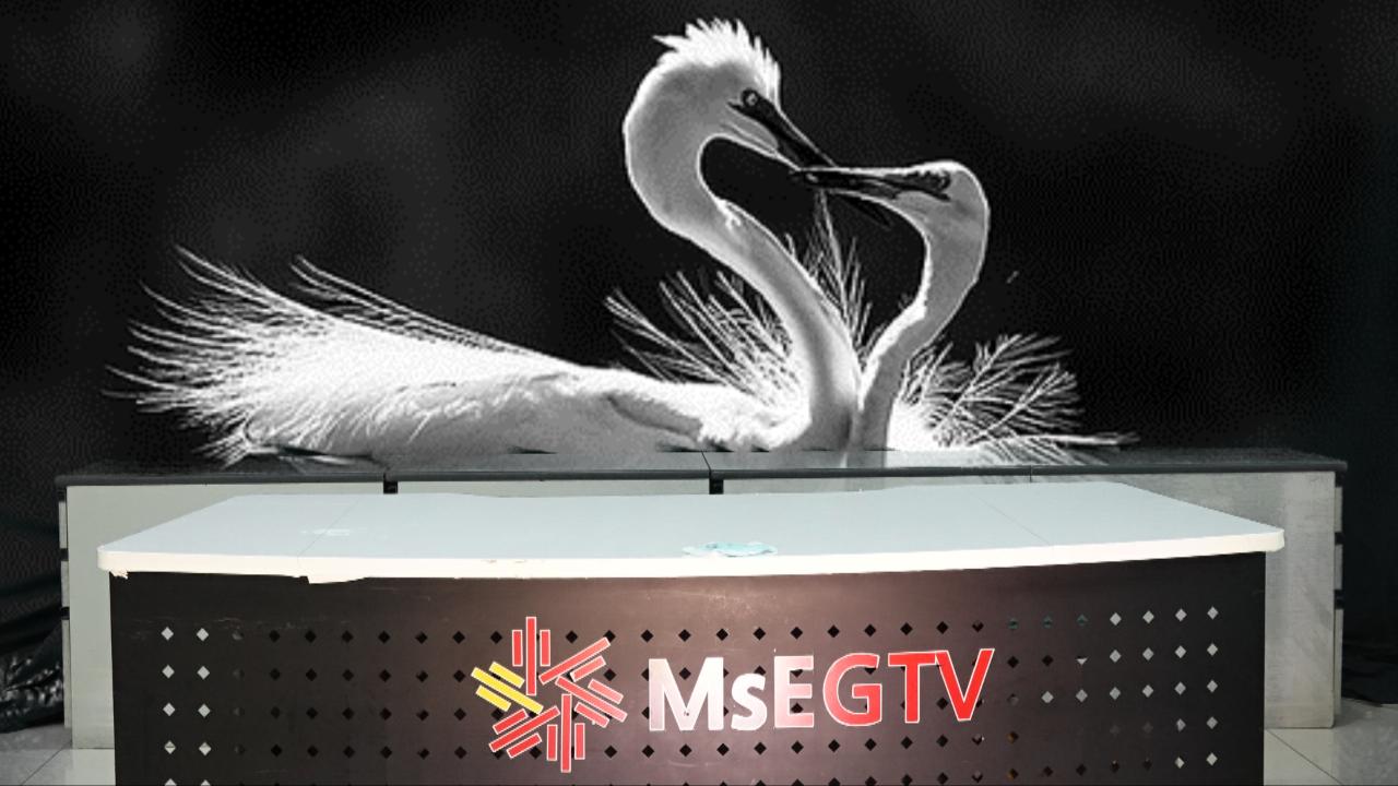MsEGTV  스튜디오
