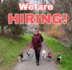 Job ad photo 1.JPEG