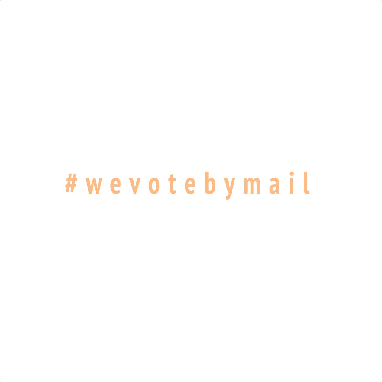 #wevotebymail (white)