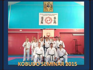 Семинар Кобудо / Kobudo Seminar