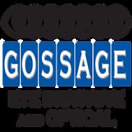 Gossage Eye Institute