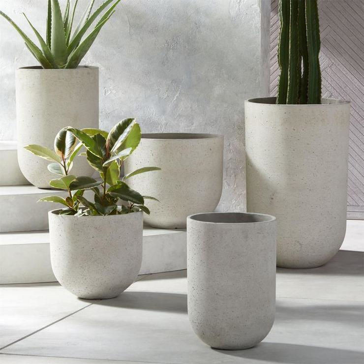 Concrete Planters with Plants Planted in them