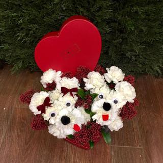 2021_valentines_day_puppy_flowers