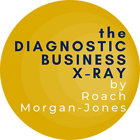 business xray logo 500x500px.png