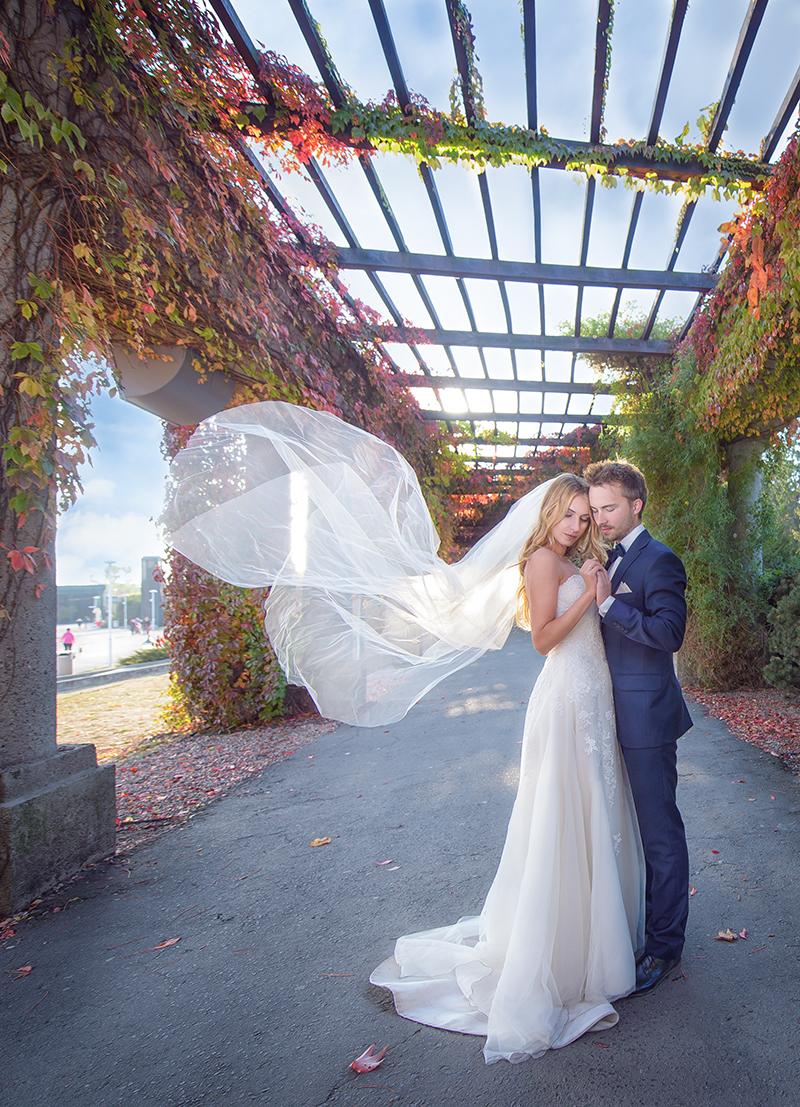 Sesje Ślubne i wesela | Karolina